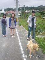 西原のお散歩